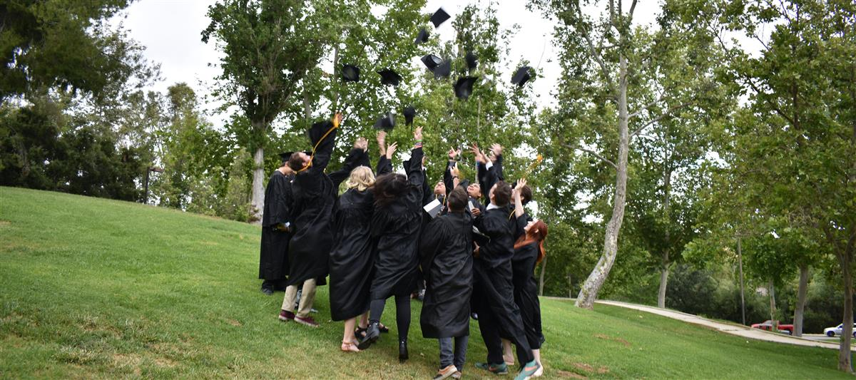 Allen High School Graduation 2020.Oak View High School Overview